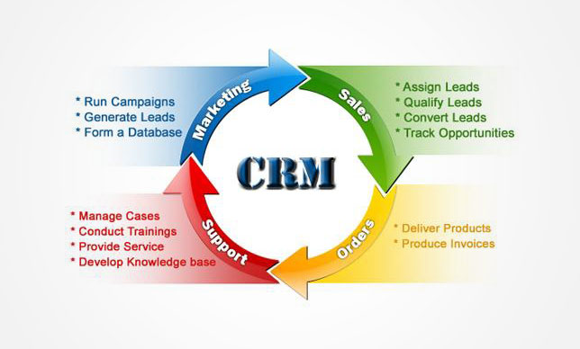 Effective Customer Relationship Management Thesis