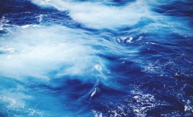 Голубые и алые океаны, или Почему не стоит бояться конкуренции