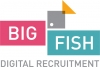 HR бюро  Big Fish Recruitment