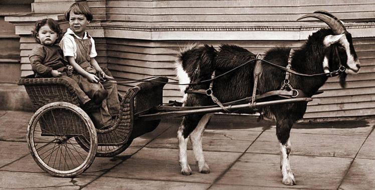 Первая версия подключенного транспорта появилась давным давно