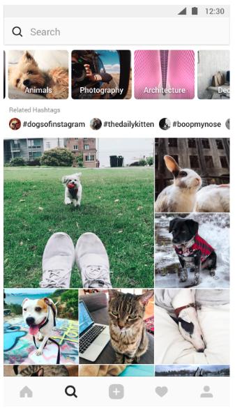 Обновлённый раздел рекомендаций в Instagram