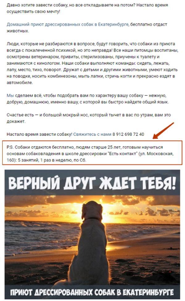 Bez_imeni-7.jpg