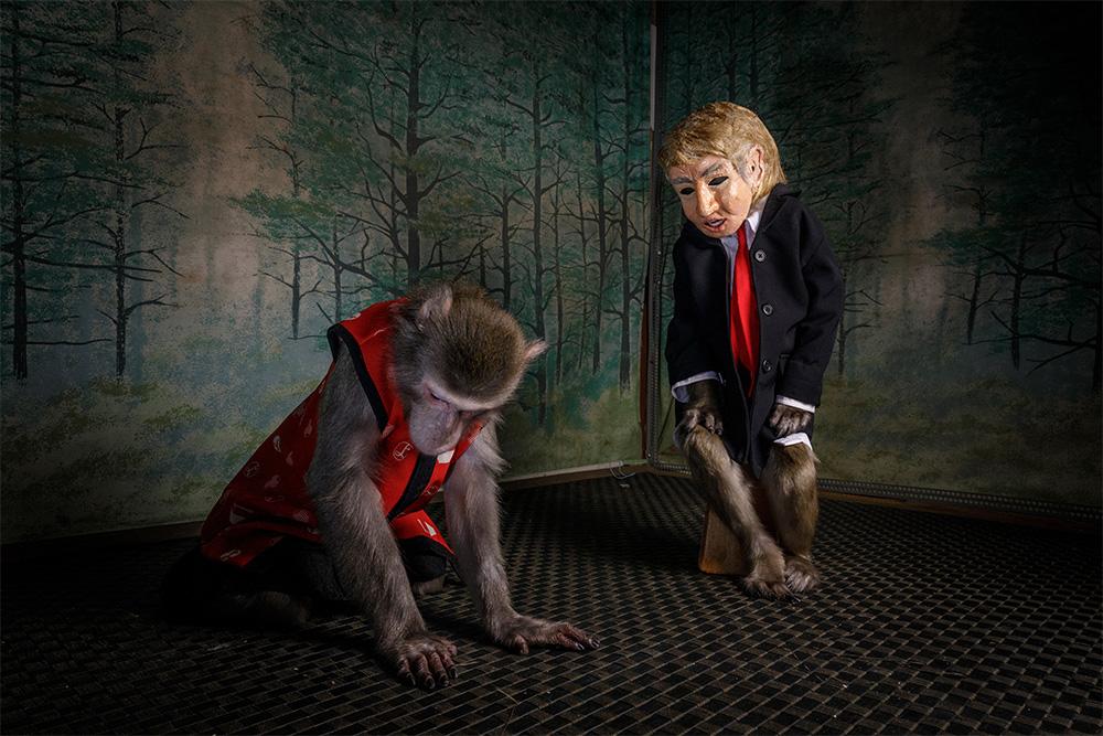 World Press Photo действуют строгие правила в отношении постановочных снимков, манипуляций и редактирования фотографий