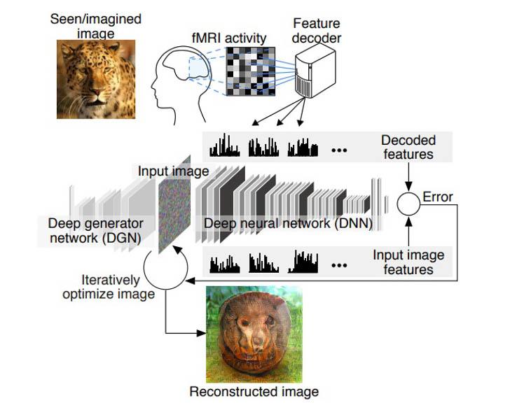 Алгоритм визуализации считанных мыслей
